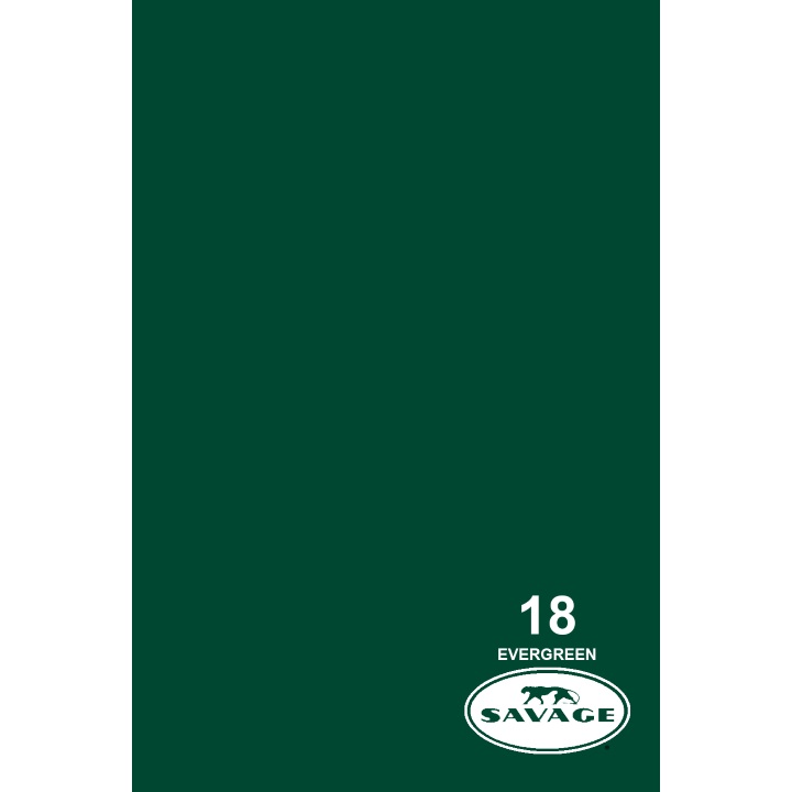 Savage Widetone EVERGREEN Background Paper