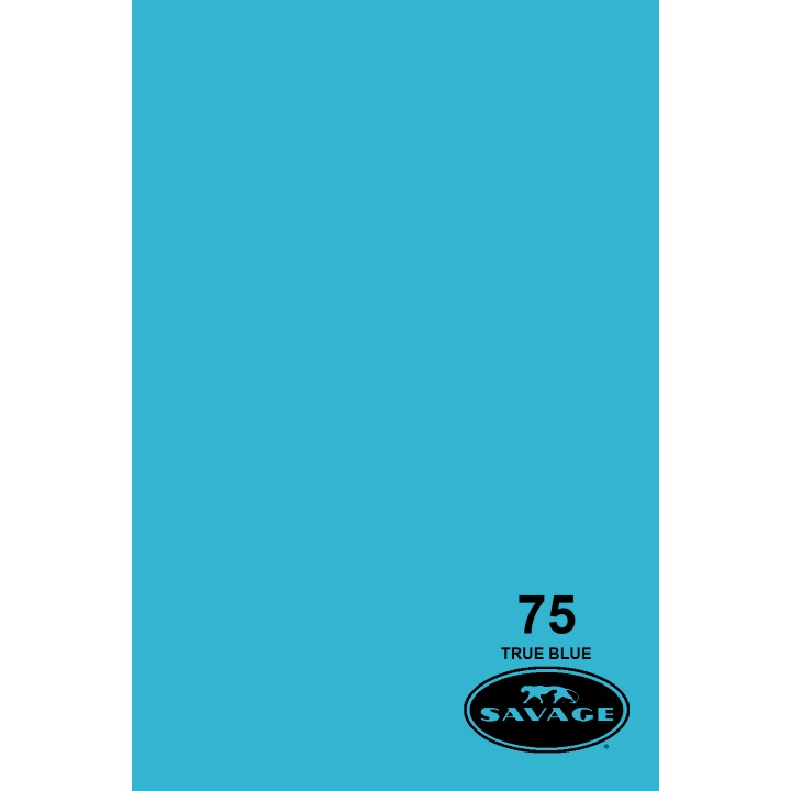 Savage Widetone TRUE BLUE Background Paper
