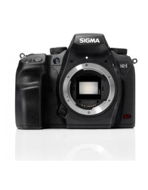 Sigma SD-1 Merrill Body