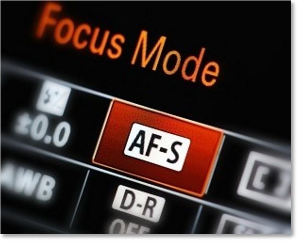 Zeiss Touit 50mm f/2.8 Lens