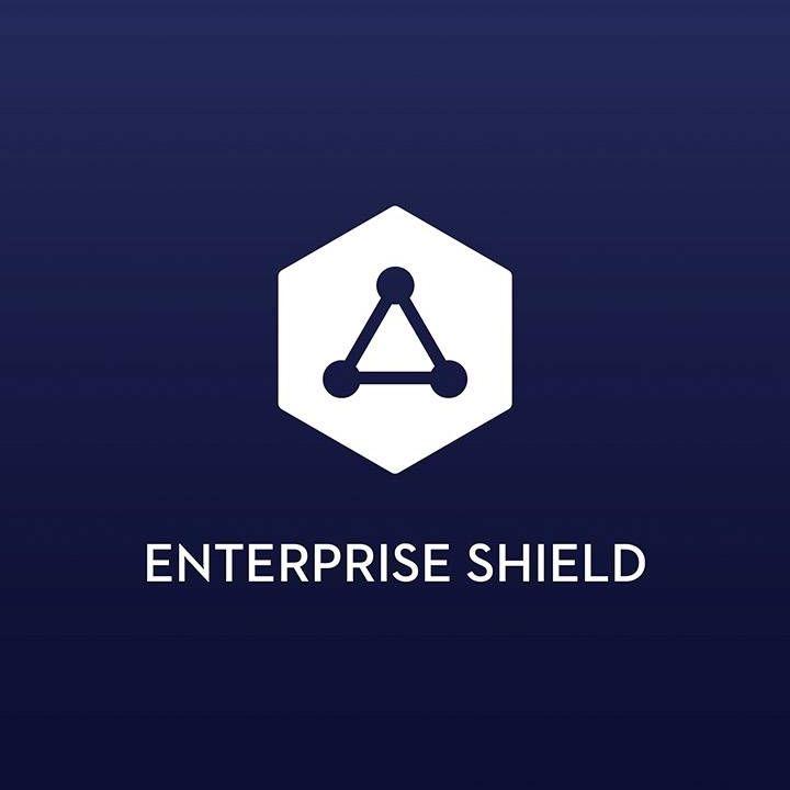 DJI Enterprise Shield Matrice 200 V2 (SW)