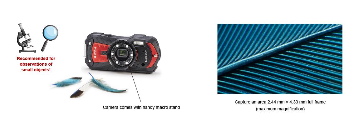 Ricoh WG-60 ability to take macro photos